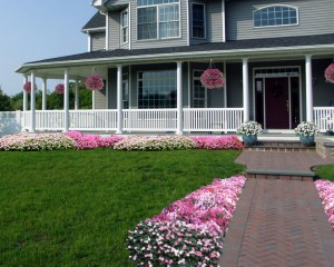 Hanging baskets, front walk flowers